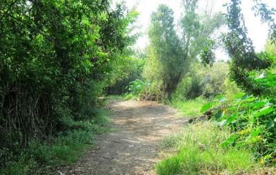 caminos del valle de mala