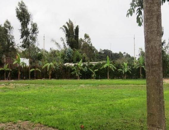 Terrenos en Mala